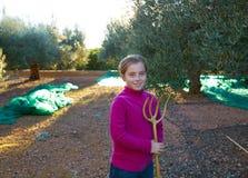 Raccolto della ragazza del bambino dell'agricoltore del raccolto delle olive Fotografie Stock