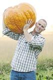 Raccolto della zucca gigante Fotografie Stock