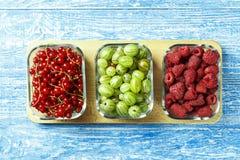Raccolto delle bacche di estate - lamponi, ribes rosso e gooseb Fotografia Stock