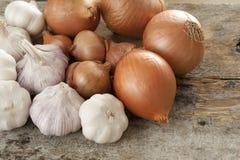 Raccolto delle cipolle e dell'aglio freschi sulla Tabella di legno Fotografie Stock Libere da Diritti