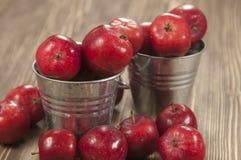 Raccolto delle mele Immagine Stock