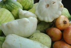 Raccolto delle verdure: zucche del cespuglio, zucche, cipolle Immagine Stock