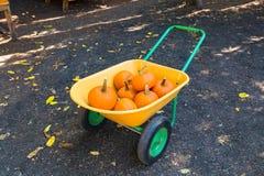 Raccolto delle zucche arancio sulla carriola delle ruote di giallo due fotografia stock libera da diritti
