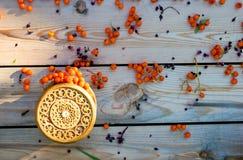Raccolto di autunno della cenere di montagna Fotografie Stock Libere da Diritti