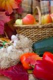 Raccolto di autunno delle verdure Fotografia Stock Libera da Diritti