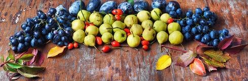 Raccolto di autunno di frutta Fotografia Stock