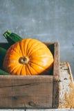 Raccolto di autunno in una scatola di legno Immagini Stock Libere da Diritti