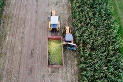 Raccolto di cereale Immagine Stock Libera da Diritti