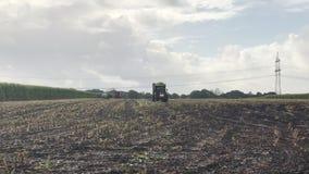 Raccolto di cereale, raccoglitrice di foraggio del cereale nell'azione, camion del raccolto con il trattore archivi video