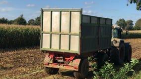 Raccolto di cereale, raccoglitrice di foraggio del cereale nell'azione, camion del raccolto con il trattore video d archivio