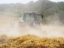 Raccolto di grano Immagine Stock