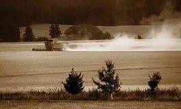 Raccolto di grano di stagione Fotografie Stock