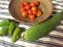 raccolto di verdure Fotografia Stock