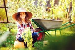 Raccolto di verdure dell'agricoltore del bambino della ragazza di autunno felice di raccolto nel giardino Immagine Stock