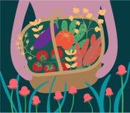 Raccolto di verdure in un canestro di legno Cetrioli, carote, melanzana, pomodori, peperoni, erbario Giardinaggio ed orticoltura  illustrazione di stock