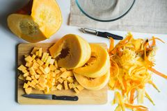 Raccolto fresco della zucca arancio Immagini Stock Libere da Diritti