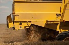 Raccolto nel giacimento di grano Immagini Stock