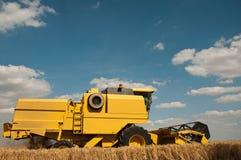 Raccolto nel giacimento di grano Fotografia Stock