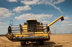 Raccolto nel giacimento di grano Immagine Stock