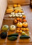 Raccolto ricco di autunno di molti specie e colori della zucca Immagini Stock