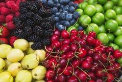Raccolto variopinto delle bacche e dei frutti di estate Vista superiore e fuoco molle Immagini Stock