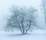 Racconto del ` s di inverno immagini stock