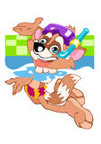 Raccoon. The cheerful animated raccoon floats in pool with water Royalty Free Stock Image