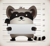 Raccoon. Mug Shot. Cartoon Character Stock Image