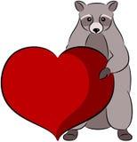 raccoon Royalty-vrije Stock Foto