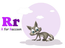 Raccoon with alphabet. 3d rendered illustration of Raccoon with alphabet royalty free illustration