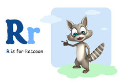 Raccoon with alphabet Royalty Free Stock Image