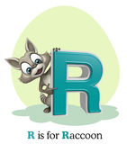 Raccoon with alphabet. 3d rendered illustration of Raccoon with alphabet Royalty Free Stock Images