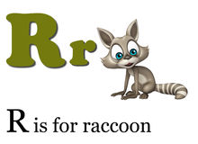 Raccoon with alphabet. 3d rendered illustration of Raccoon with alphabet vector illustration