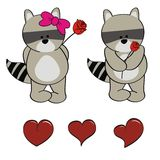 Raccoon baby cartoon valentine rose set Royalty Free Stock Images