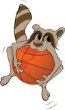Raccoon and a basketball ball. Cartoon Royalty Free Stock Photos