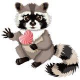 Raccoon bonito dos desenhos animados Imagem de Stock