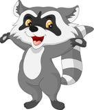 Raccoon cartoon Stock Image