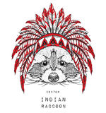 Raccoon in the colored Indian roach. Indian feather headdress of eagle. Hand draw vector illustration