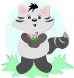 Raccoon con il mazzo del fiore Immagini Stock