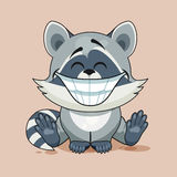 Raccoon cub with huge smile Stock Photos