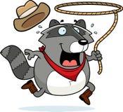 Raccoon do rodeio Fotos de Stock Royalty Free