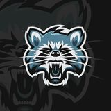 Raccoon e sport logo vector illustration