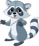 Raccoon engraçado dos desenhos animados Imagem de Stock Royalty Free