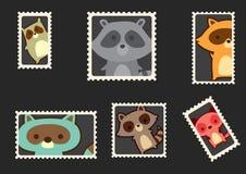 Raccoon envelope stamps Royalty Free Stock Photo