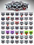 Raccoon face emotions. Facial expression. Vector illustration. Funny Crazy Raccoons cartoon character.emoticons set. Raccoon face emotions. Facial expression Royalty Free Illustration