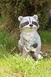 Raccoon Figurine Stock Photography