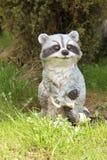 Raccoon Figurine Stock Photography