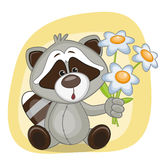 Raccoon with flowers Stock Images