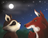Raccoon and fox by night Stock Photos