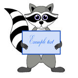 Raccoon gargle with a sign in hand illustration in white background in  Stock Images